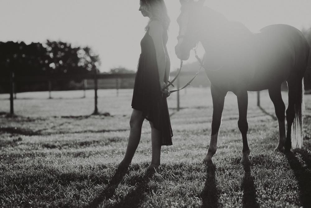 HorsesBlog-40.jpg
