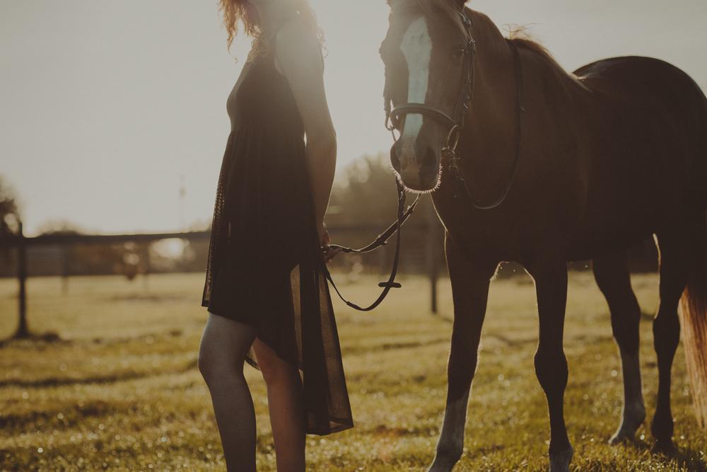 HorsesBlog-42.jpg