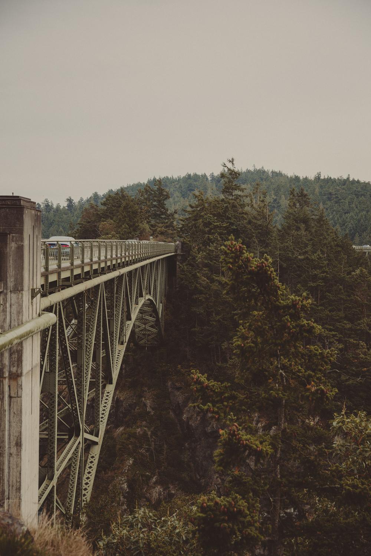 Seattle-168.jpg