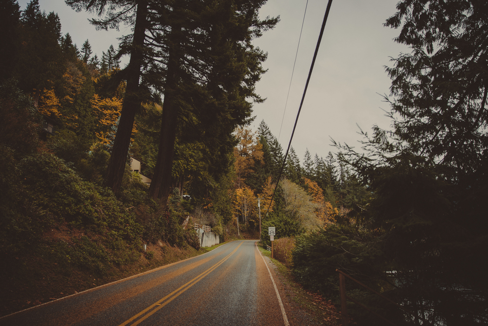 Seattle-185.jpg