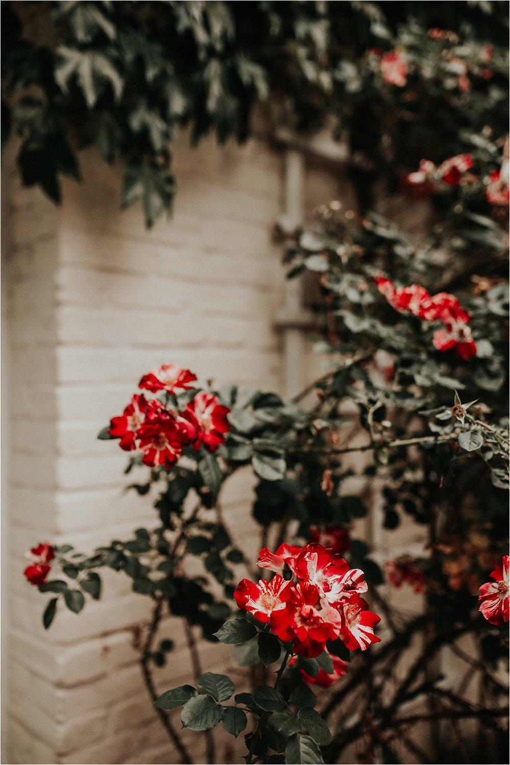 Sarah Brookhart Photography_0789.jpg