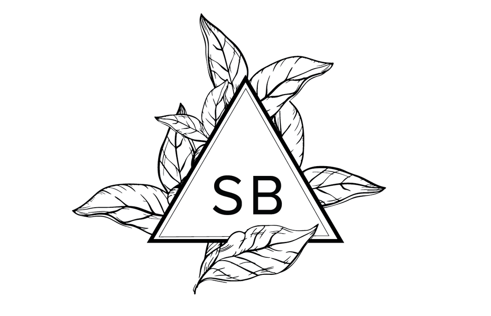 SB triangle logo.png