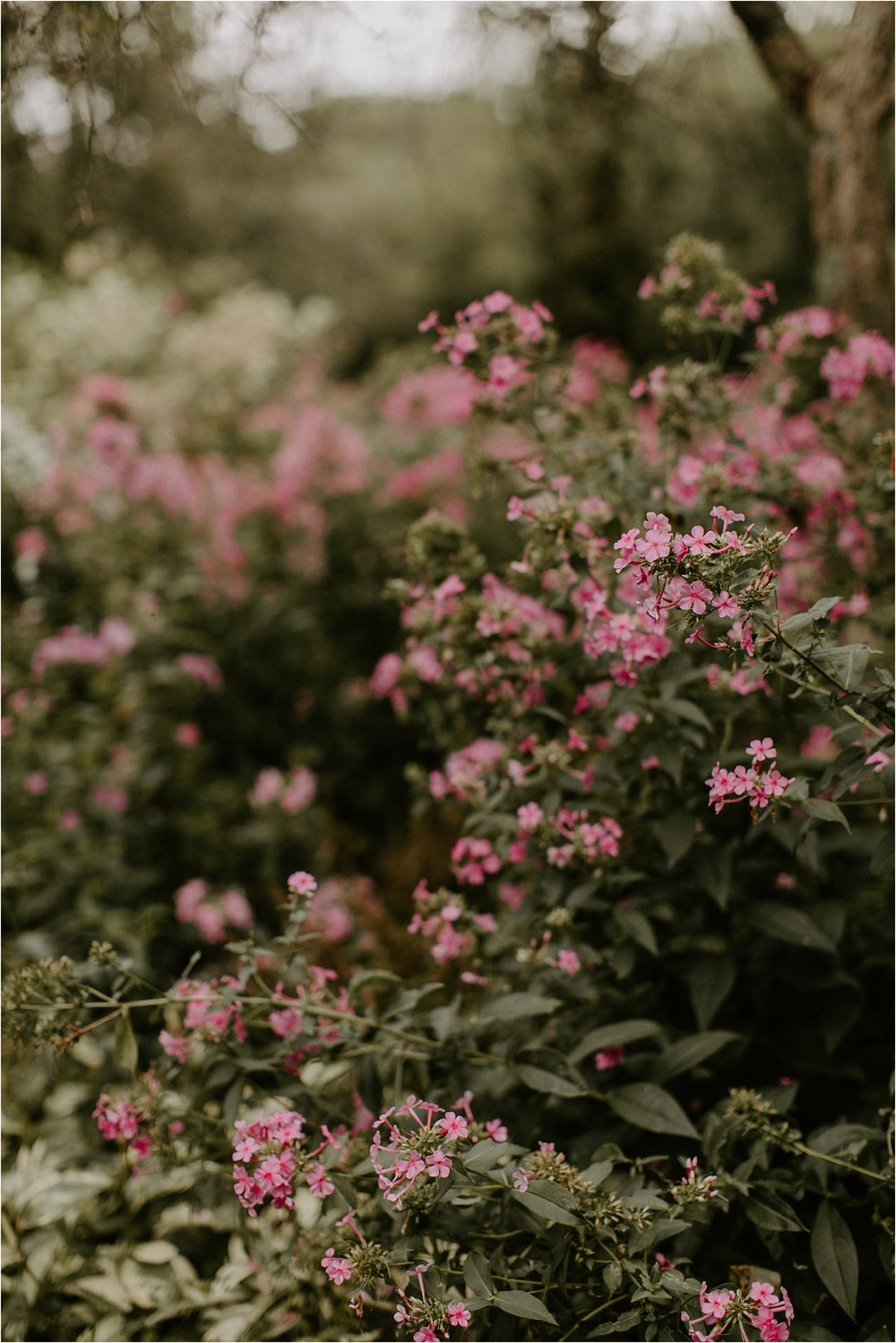 Sarah_Brookhart_Hortulus_Farm_Garden_and_Nursey_Wedding_Photographer_0015.jpg