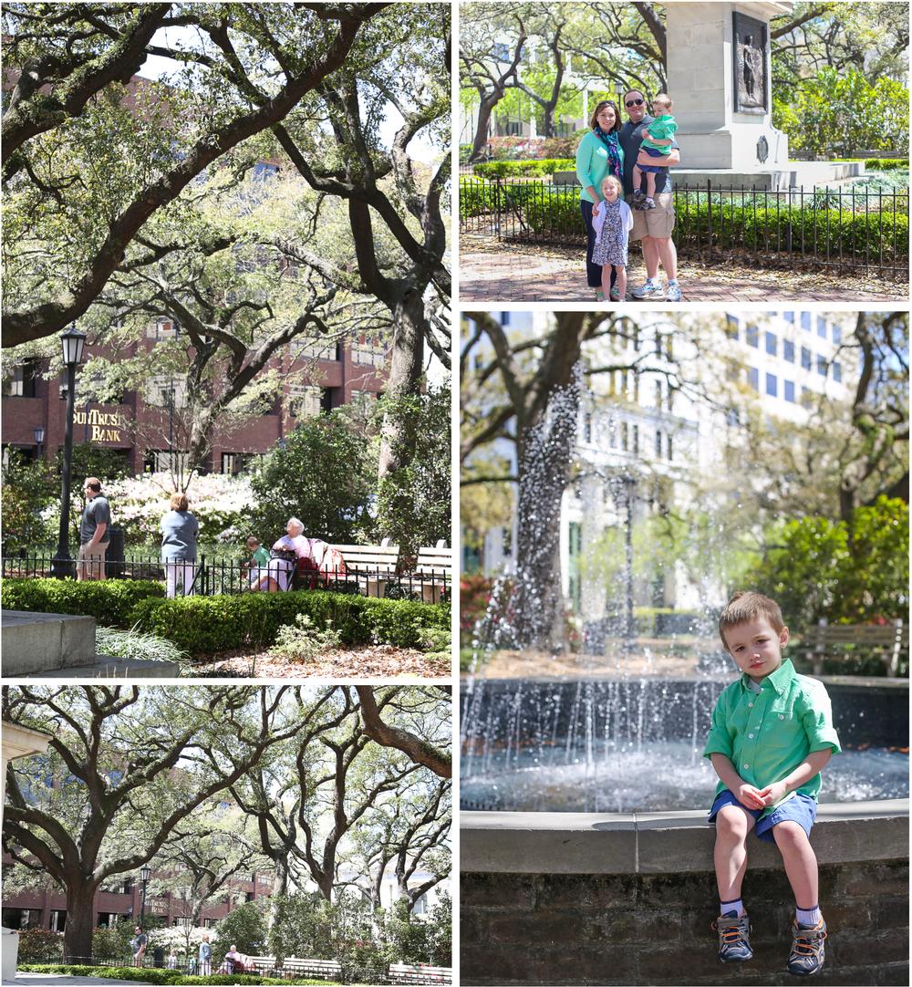 Savannah1.jpg