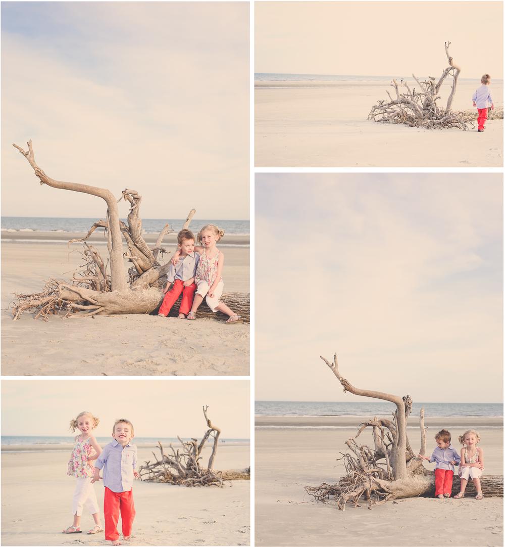 Driftwood1.jpg