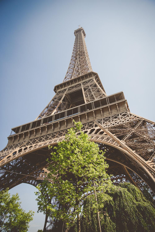 ParisNolaExport-1.jpg