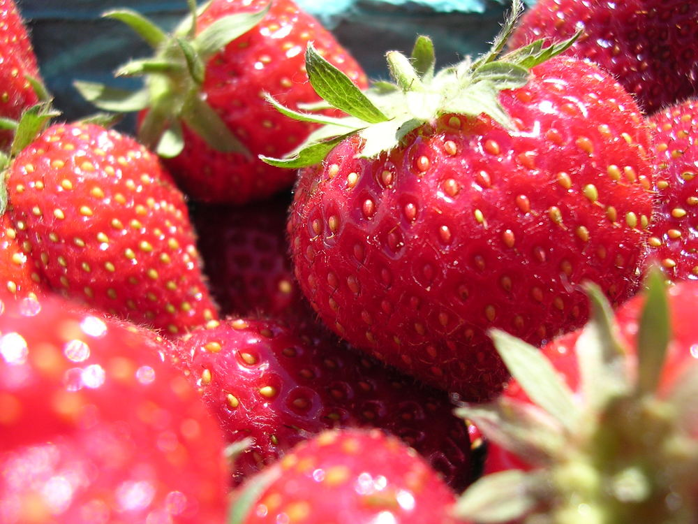 Strawberry season is coming soon!