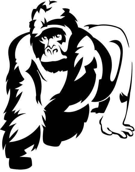 gorillashapes_final.jpg