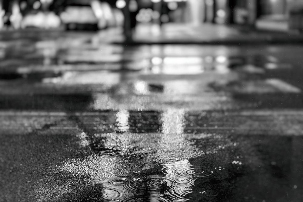 raining2 (1 of 1).jpg