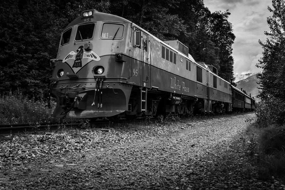 train (1 of 1).jpg