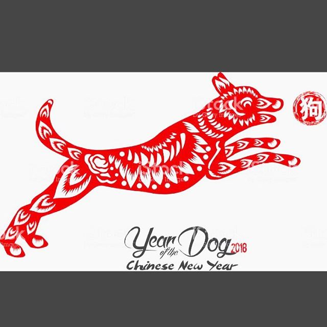 Happy Lunar New Year! #yearofthedog #Earthdog #lunarnewyear #chinesenewyear #dogyear #chinesestreetfood #nashvillechinese #hotasianbuns #eatbaonow #baodown #baozi #eatnashville #eat615 #steambuns #charsiubao #handcrafted #nashvillefoodtruckcollective