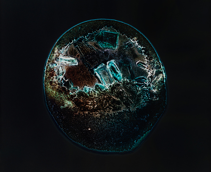 drugs-under-the-microscope-designboom04.jpg