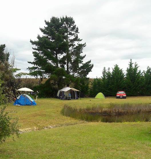 poppawhiwhi-freedom-camp-1