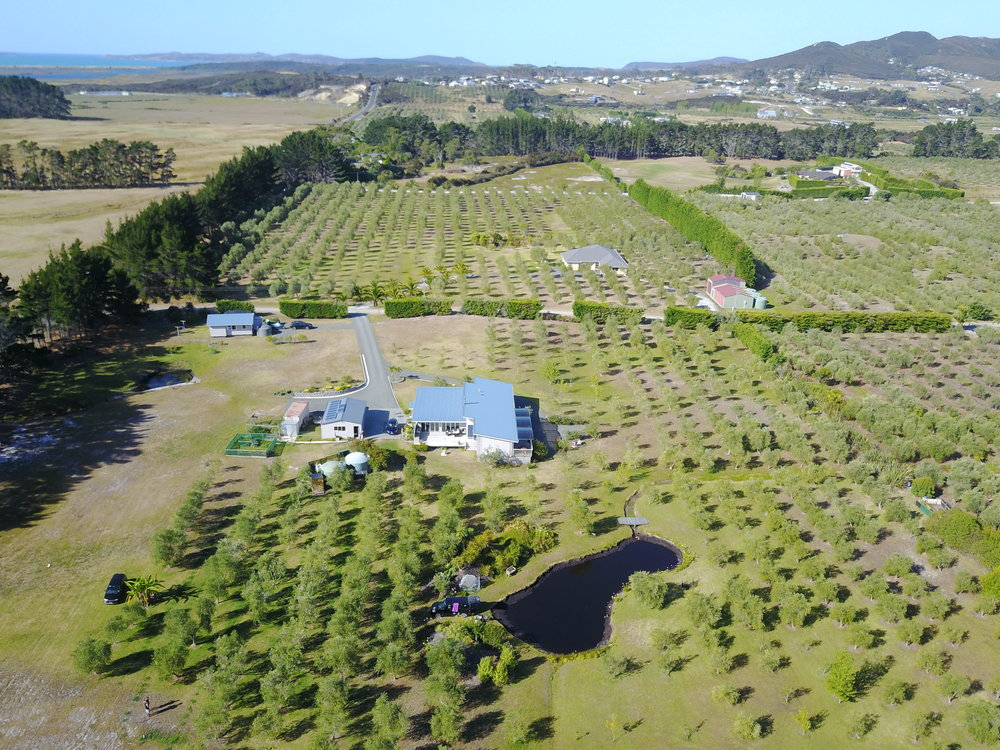 poppawhiwhi-freedom-camping-aerial