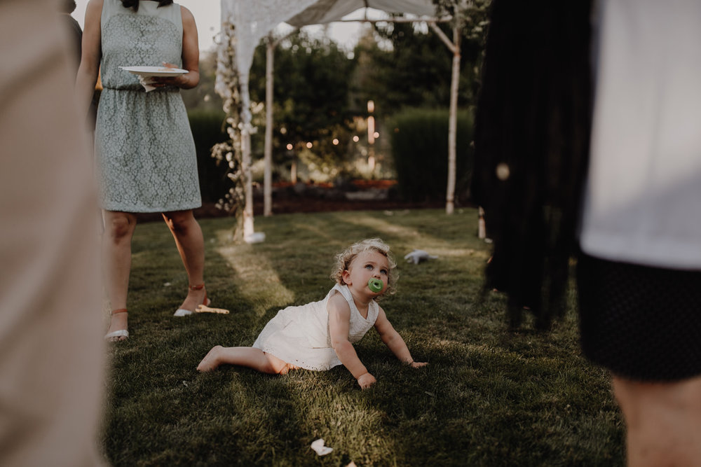 sarah_haydn_wedding-433.jpg