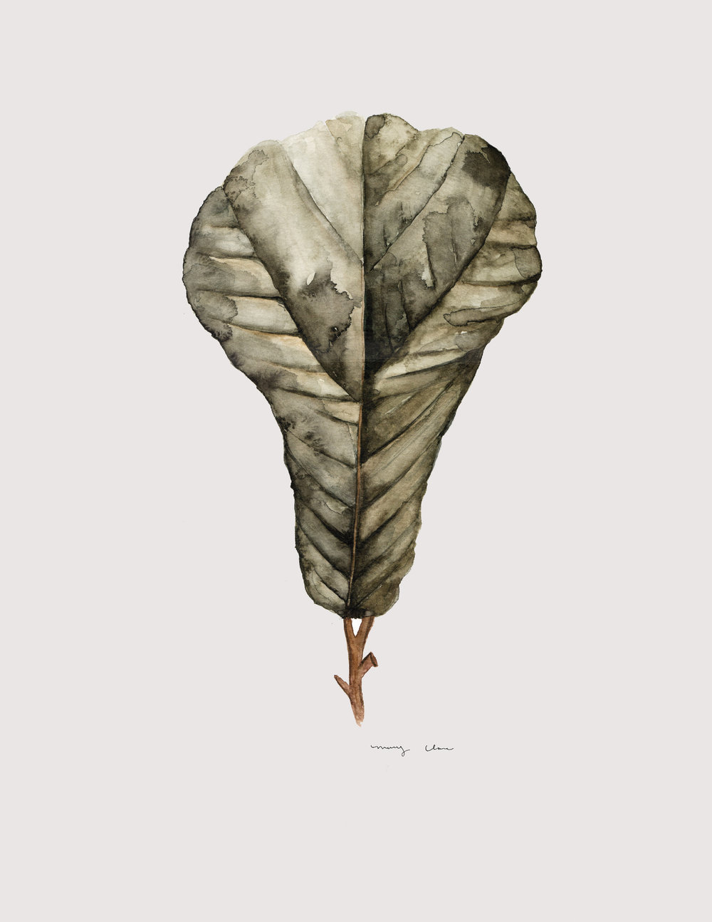 Leaf: Mary Clare Wilkie