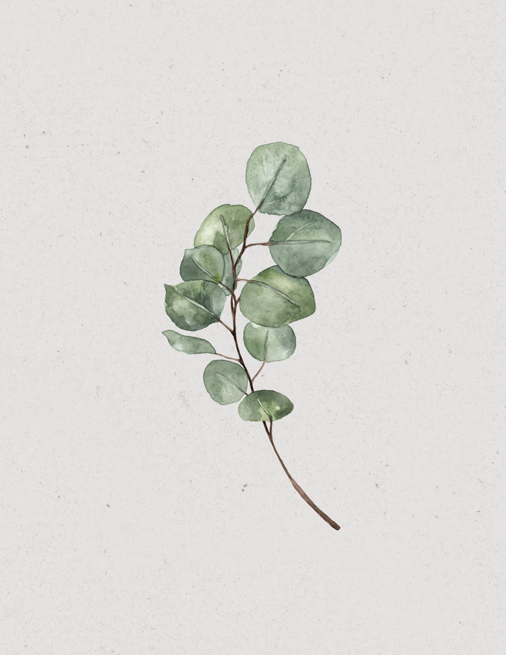 Leaves: Mary Clare Wilkie