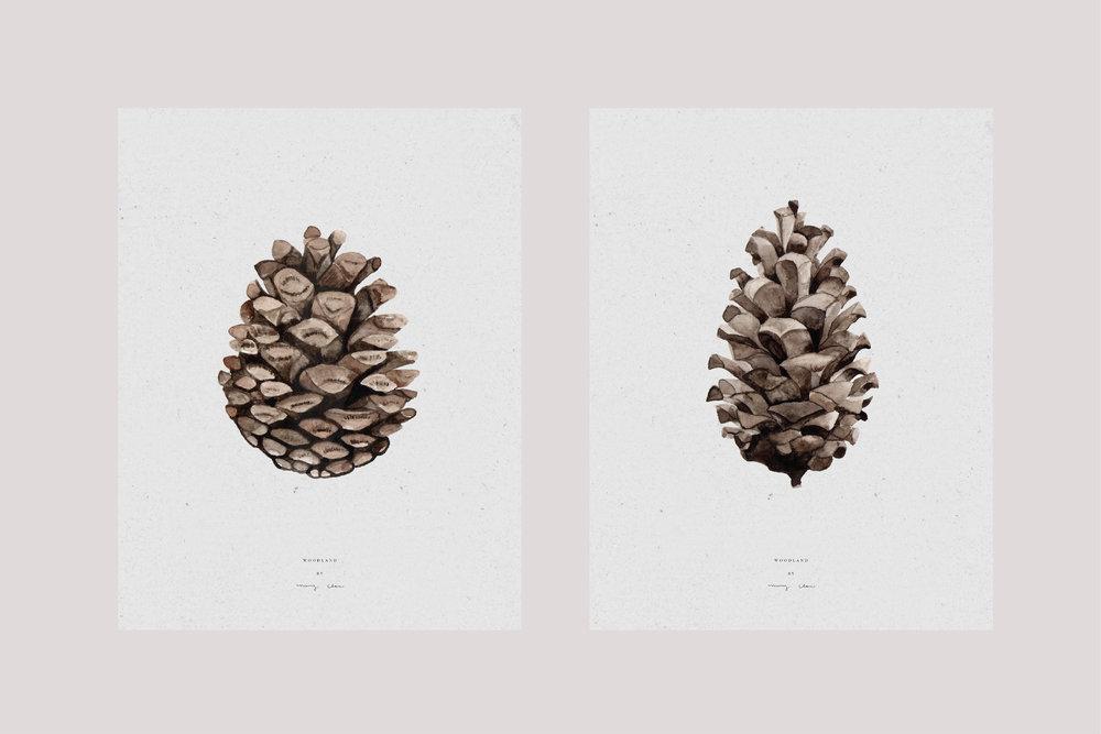 Wilkie_maryclarewilkie-card-Pinecones-02.jpg