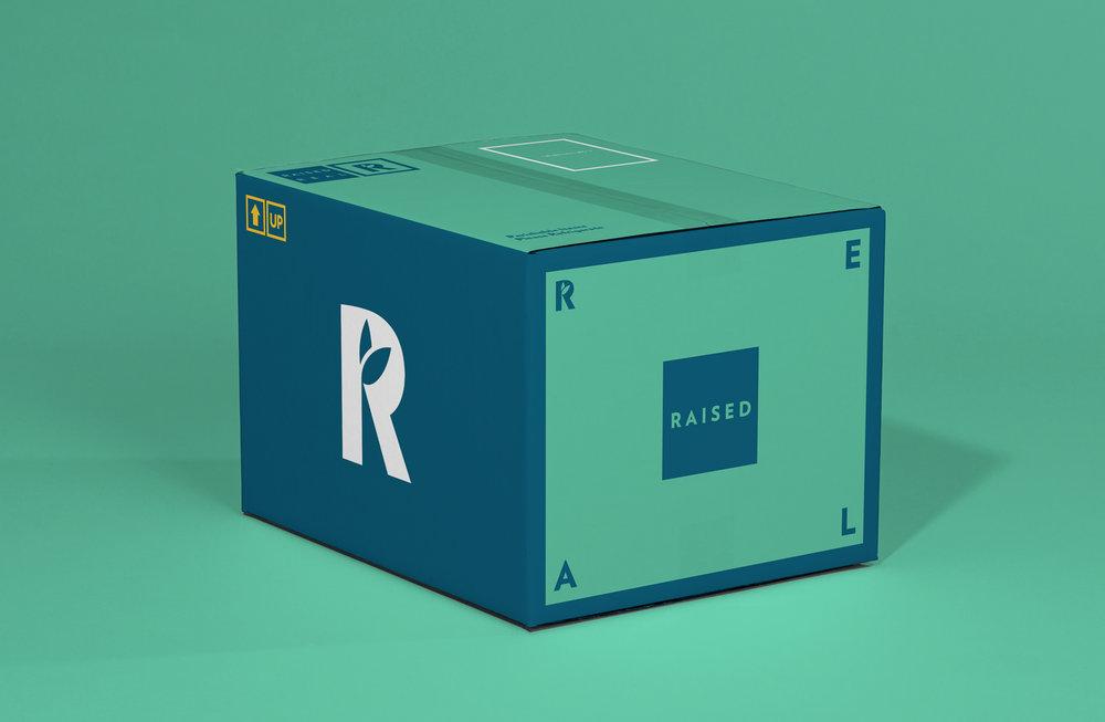 RR Box 1.jpg