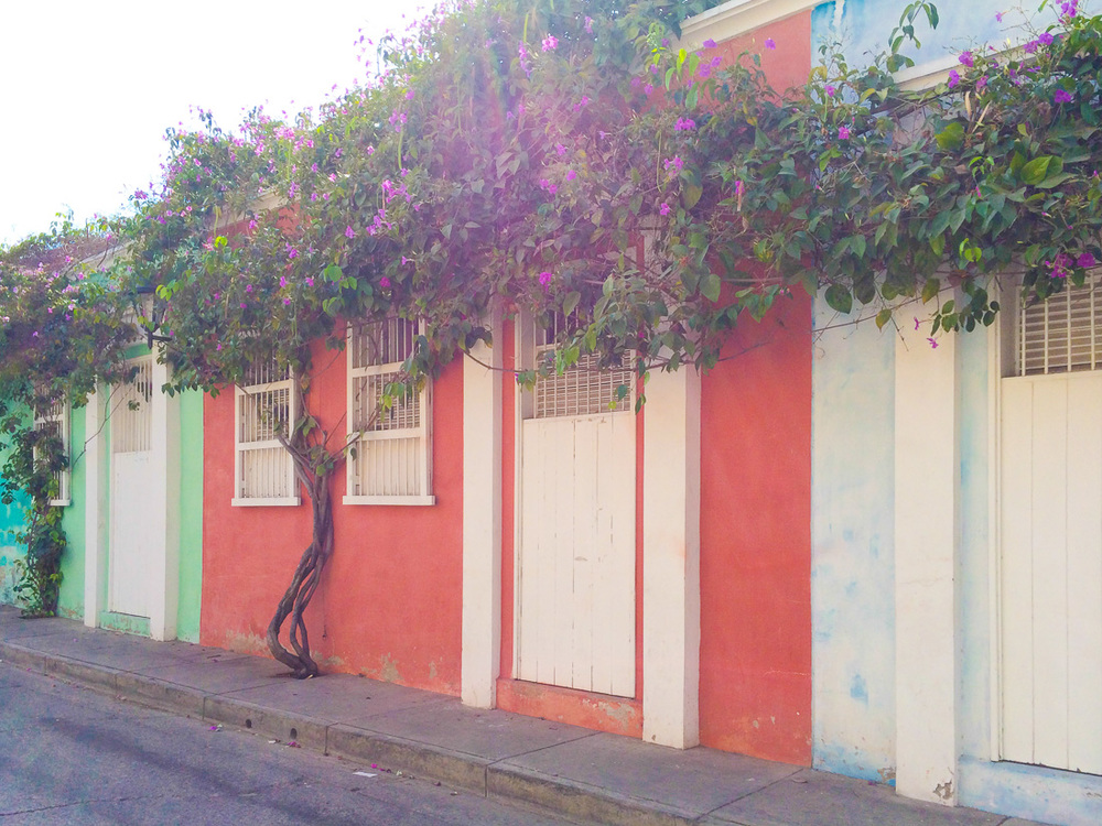 20140125_Colombia_053_pastel_wall2.jpg