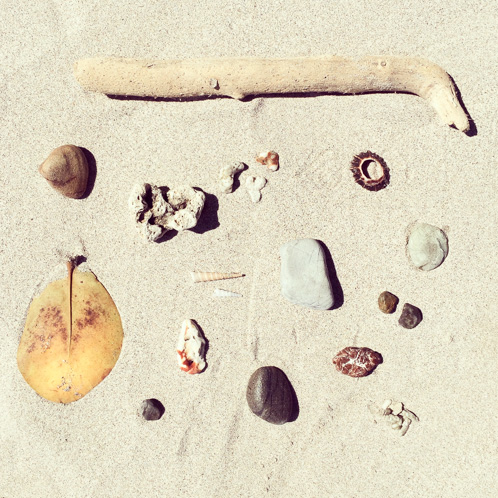 Beach artifacts; Manuel Antonio, Costa Rica