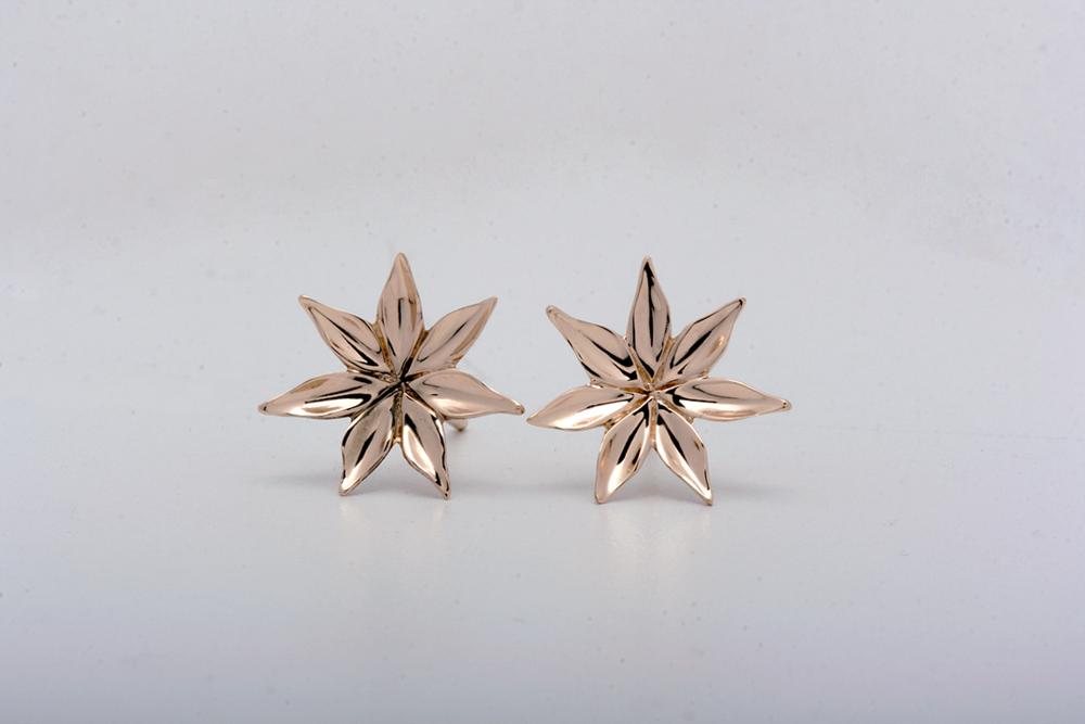 starflower_insta.png