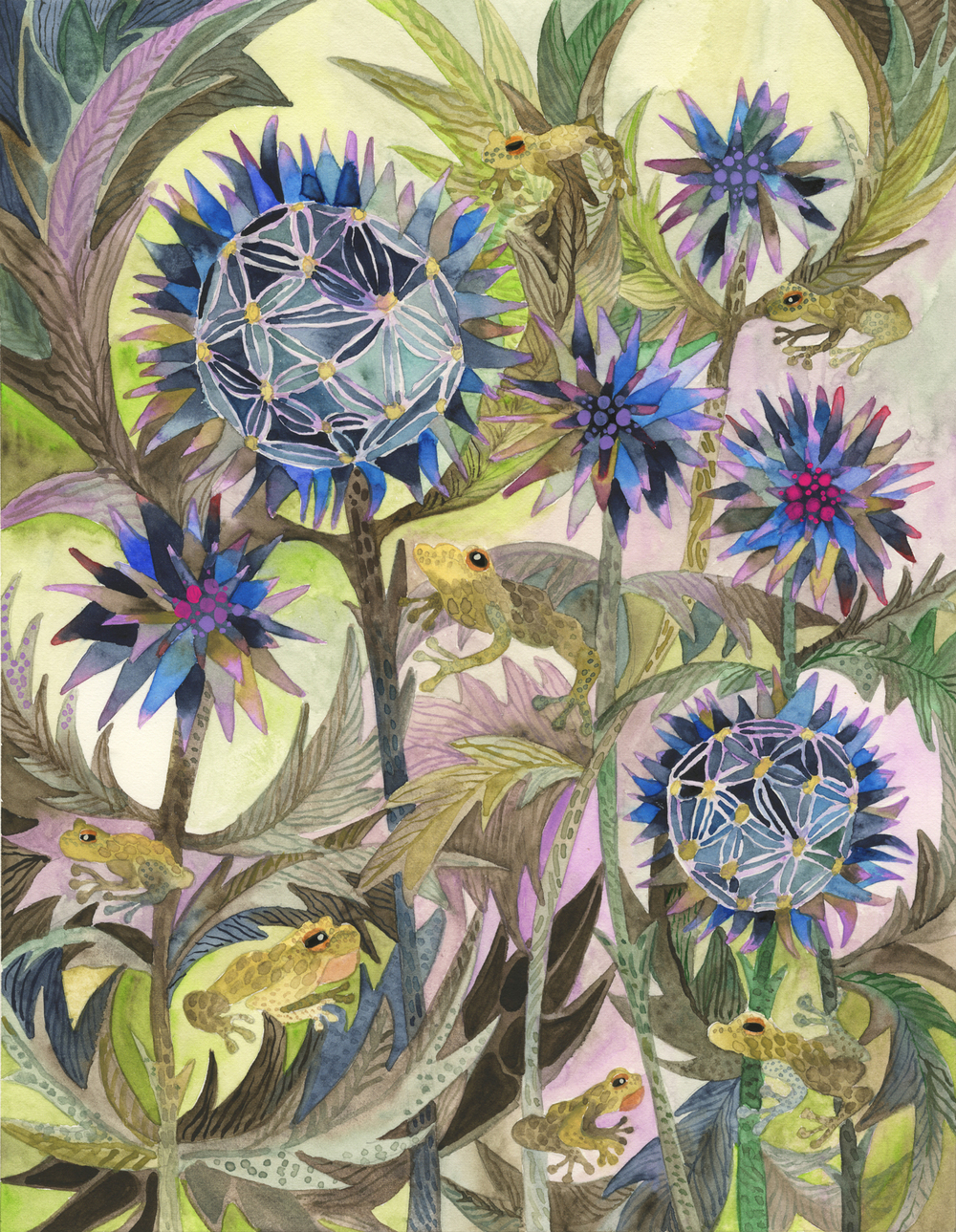 Echinops&Peepers2Square.jpg