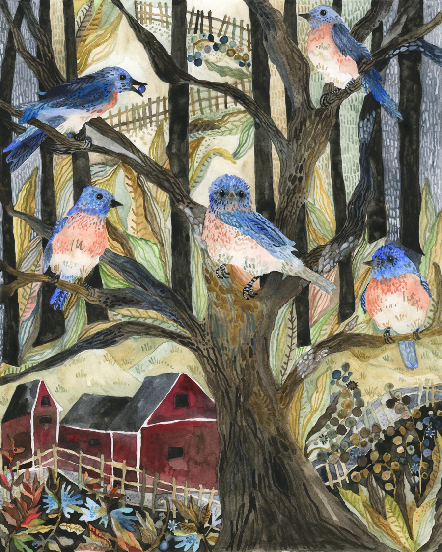 """Bluebirds in a Country Setting."""
