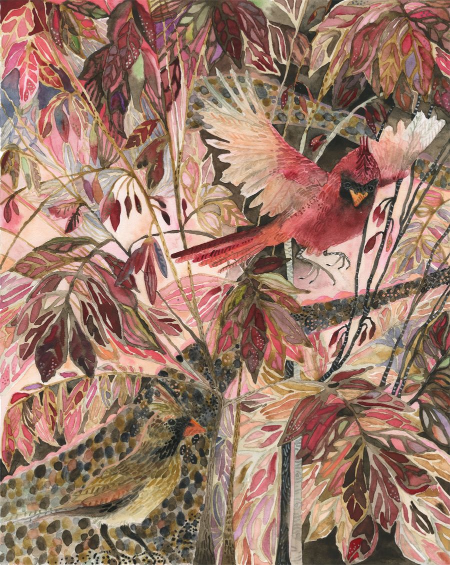 """Cardinals & Flame Bush"""