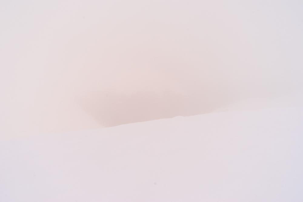 Lintern-05303.jpg