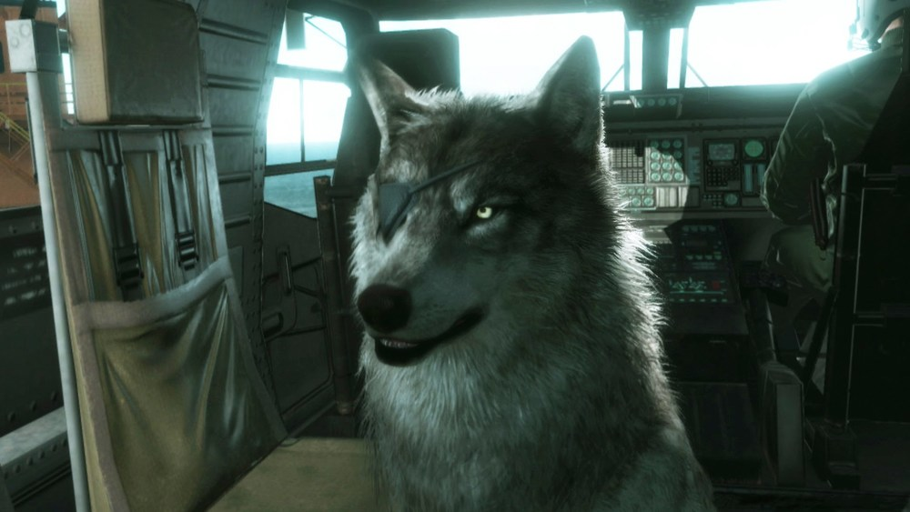 DD (Diamond Dog) in MGSV: The Phantom Pain