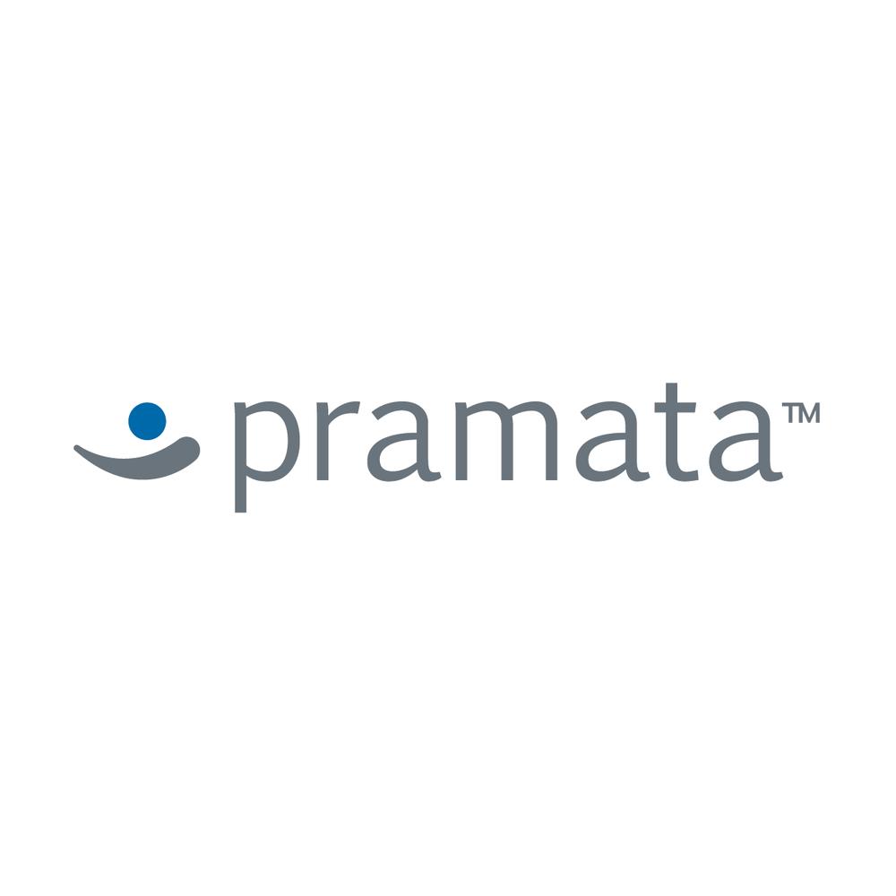 pramata-01.png