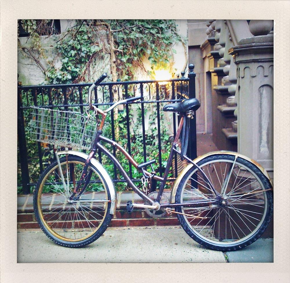 WV_bike.jpg