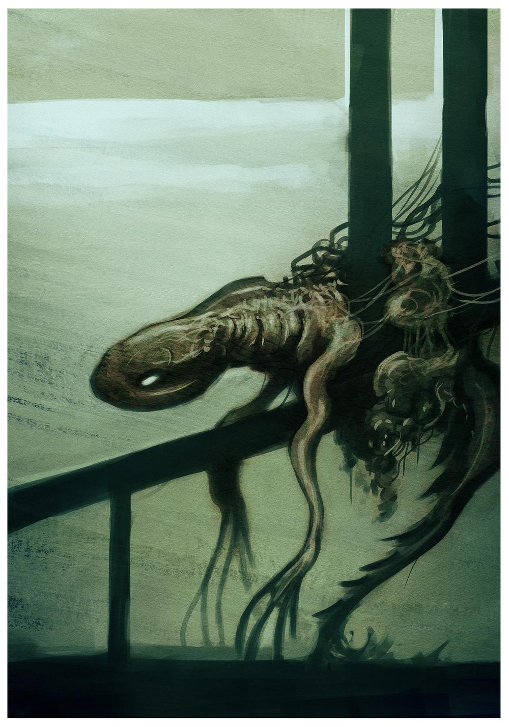 john-bergin-salamander.jpg
