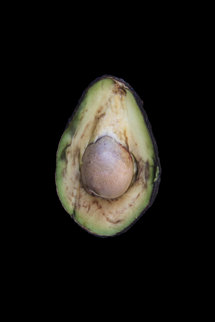 Avocado, Day Two