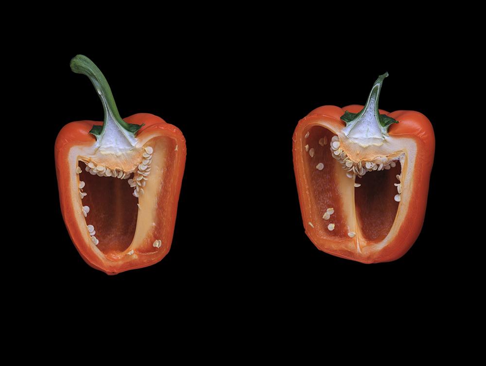 Orange Pepper, Day Two