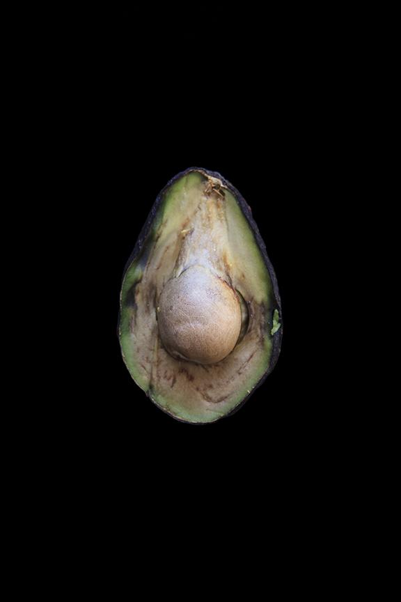 Avocado, Day Three