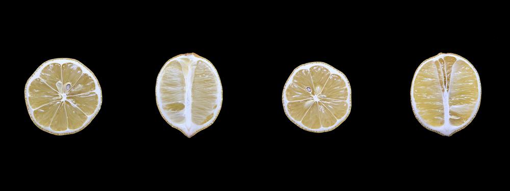Lemon, Day Four
