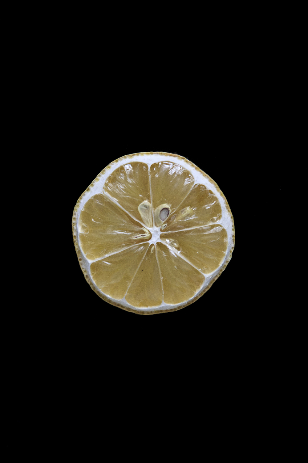 Lemon, Day Seven