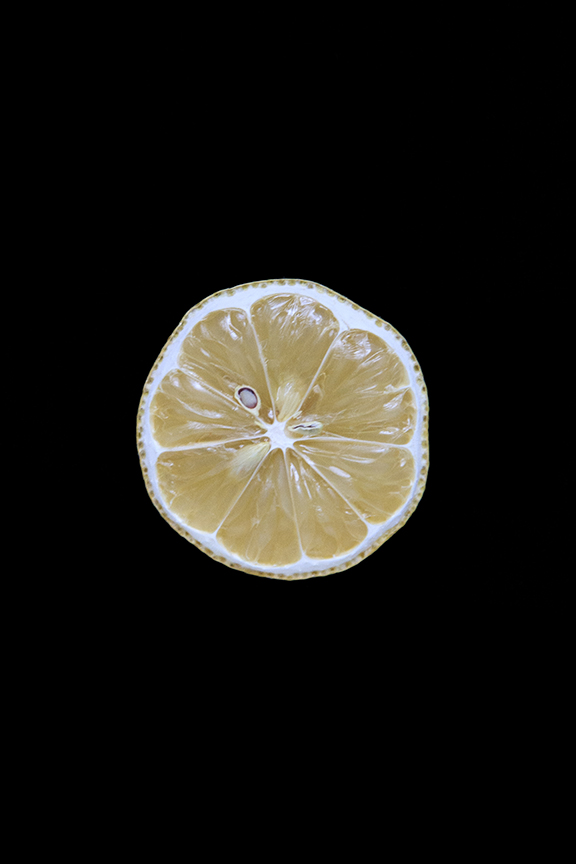 Lemon, Day Eight