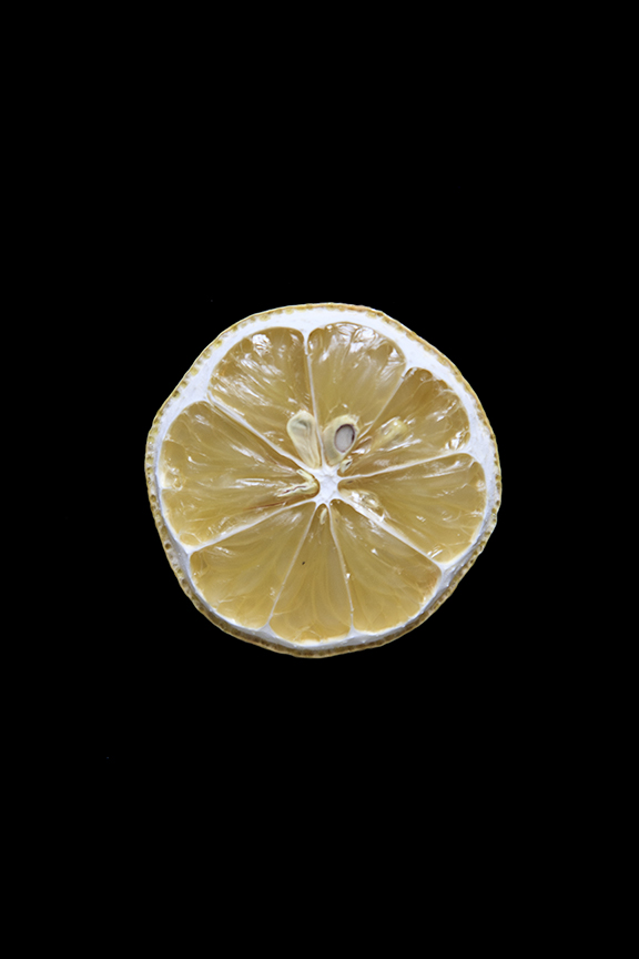 Lemon, Day Nine