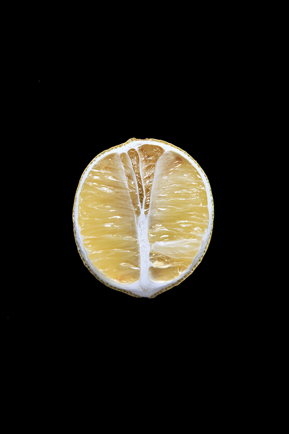Lemon, Day Nine