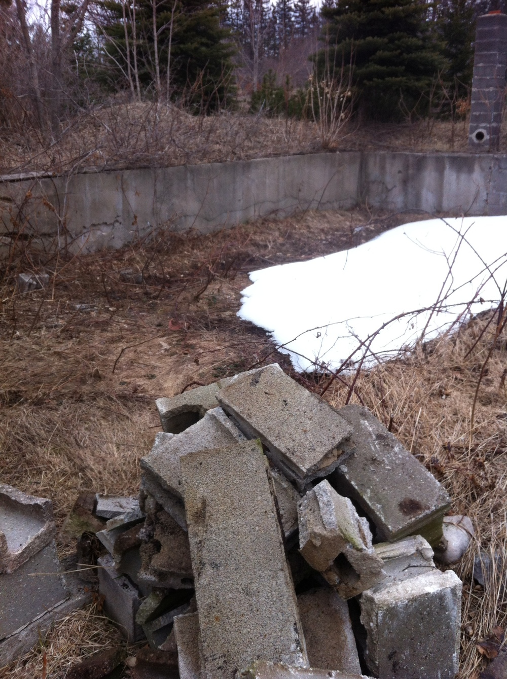 Foundation becomes a garden wall, when weeds are removed and soil improved.