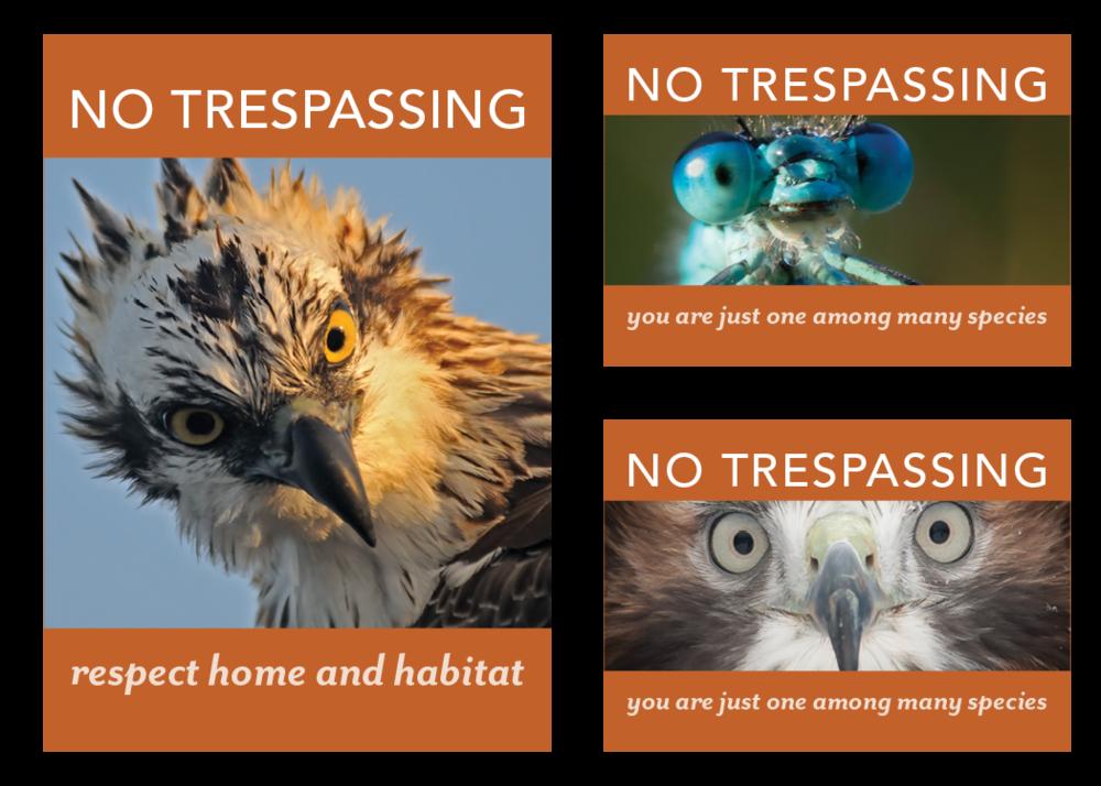 NSNP_NoTresspassing_Web.png