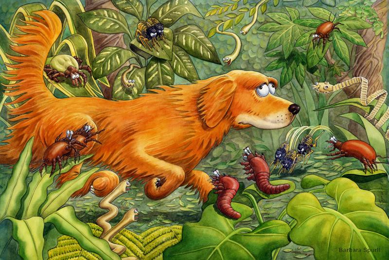 Dog in Jungle