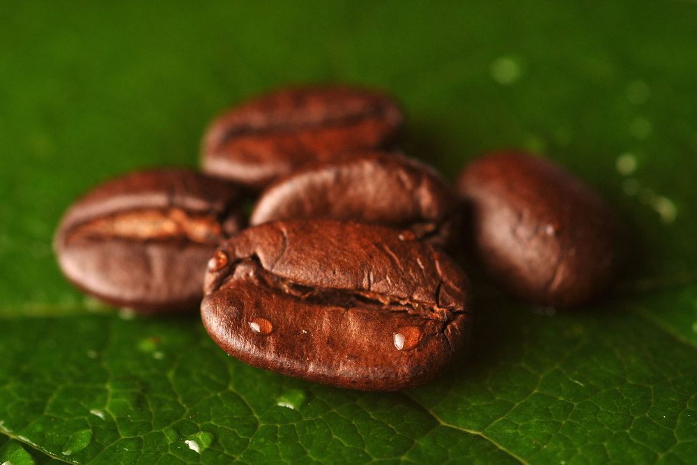 Changing The World By Changing Your Coffee.     We have created for you two unique blends of coffee, including an Organic blend, that when brewed in place of other mainstream coffees will provide sustainable solutions in Haiti, Honduras, & Haiti.     (via  Coffee — Connect Global )