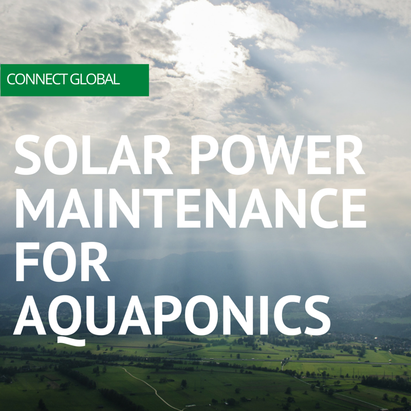 Over the years Connect Global has installed, and helped maintain aquaponics for those in need of sustainable methods of growing fish and vegetables. One of our systems in Cusuna is in Need of two marine batteries and other miscellaneous items to optimize the growth of the tilapia and vegetation.
