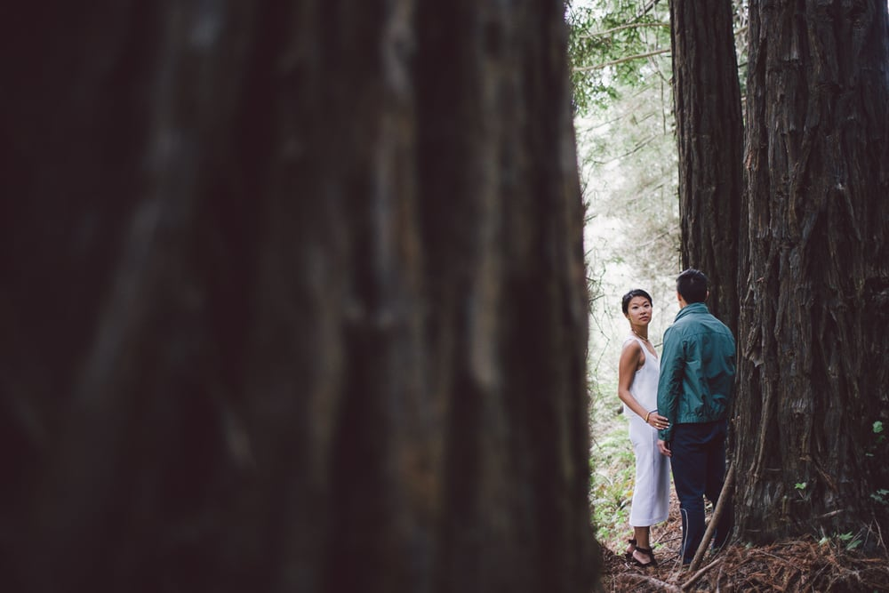 big sur engagement