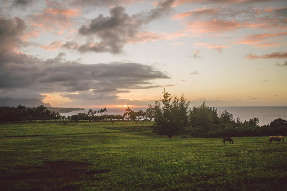 hanalei bay kauai elopement wedding photographer evangeline lane
