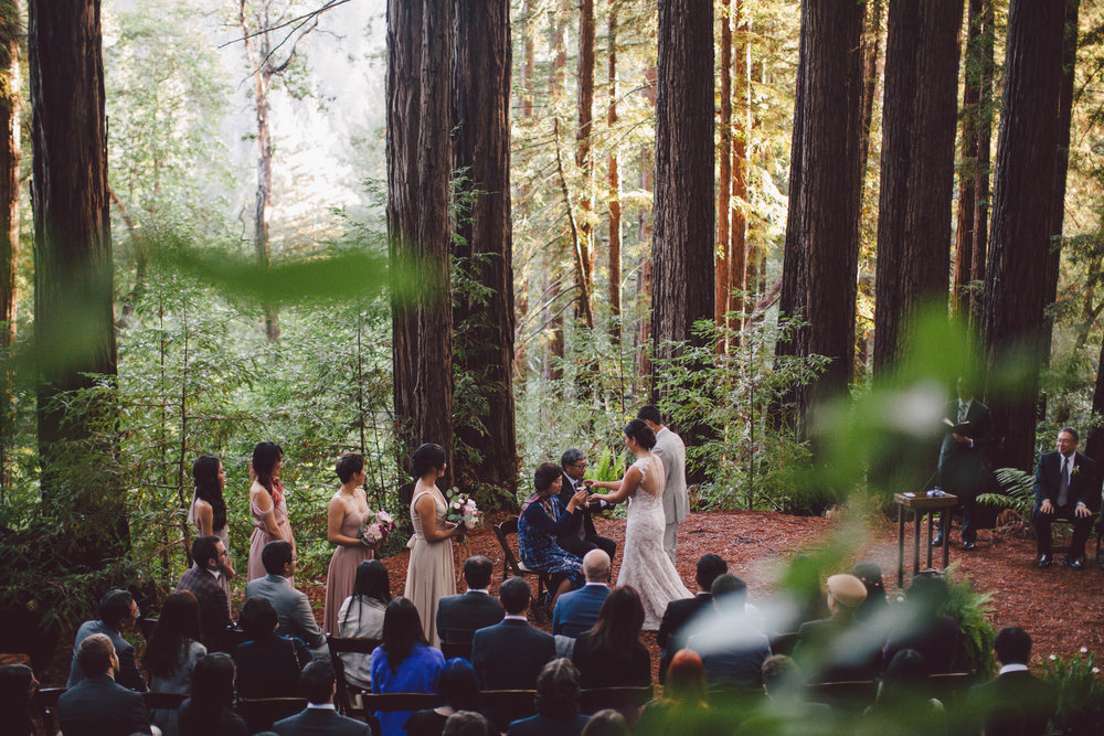 sequoia-retreat-center-wedding-california-redwoods-woodland